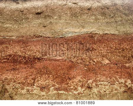ancient soil