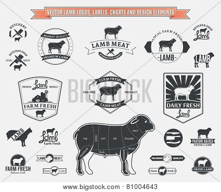 Vector Lamb Labels, Charts and Design Elements
