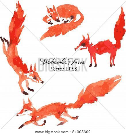 set of watercolor foxes