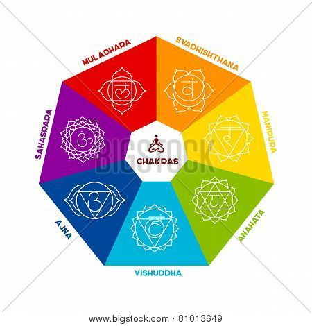 Color Chakra Scheme On White Background