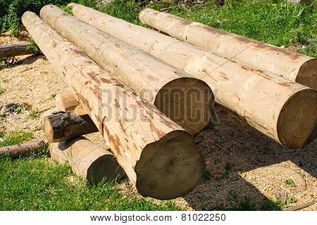 Peeled Thick Logs In The Log House Construction Yard