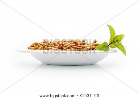 Healthy Mealworms On Small Plate With Decoration