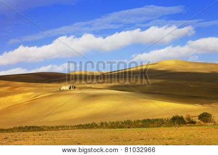 pictorial  landscapes of Tuscany. golden hills .