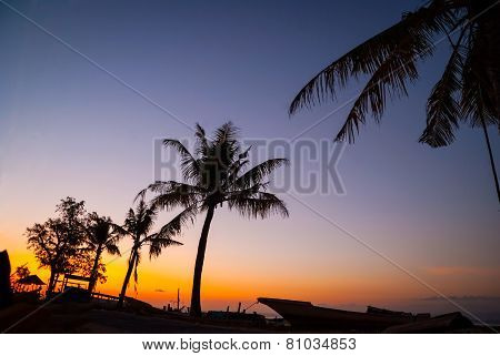 Colorful Sunset With Palm Tree Silhouettes, Indonesia