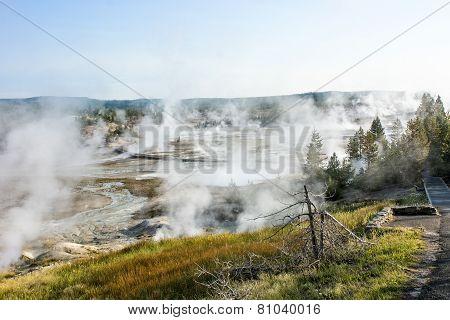 Geyser basin in Yellowstone park