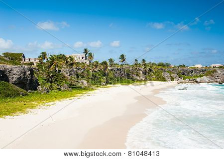Harrismith Beach is one of the most beautiful beaches on the Caribbean island of Barbados. It is a tropical paradise with palms hanging over turquoise sea and a ruin of an old mansion on the cliff