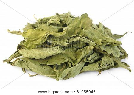 Dried Stevia On White Background
