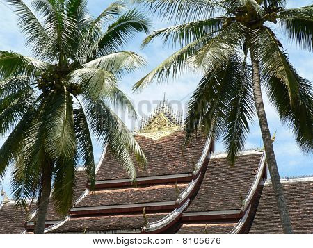 Temple roof with palms