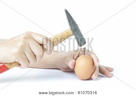 Hammer knock on chicken egg