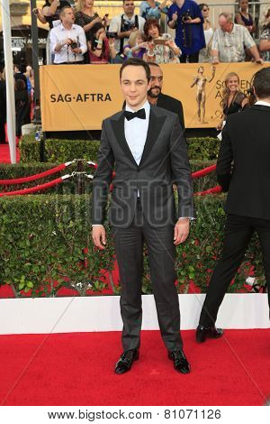 LOS ANGELES - JAN 25:  Jim Parsons at the 2015 Screen Actor Guild Awards at the Shrine Auditorium on January 25, 2015 in Los Angeles, CA