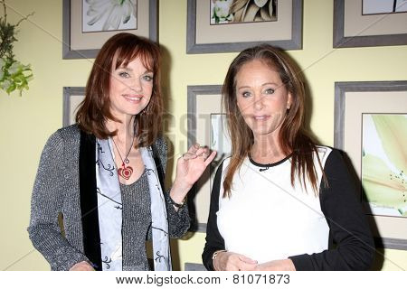LOS ANGELES - JAN 23:  Pamela Sue Martin, Pamela Bellwood at the Home and Family Show taping at a Universal Lot on January 23, 2015 in Universal City, CA