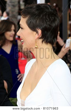 LOS ANGELES - JAN 25:  Maggie Gyllenhaal at the 2015 Screen Actor Guild Awards at the Shrine Auditorium on January 25, 2015 in Los Angeles, CA