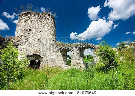 Castle Ruins In Sidoriv