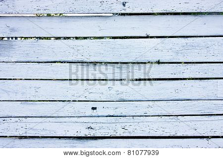 Wood White Fence