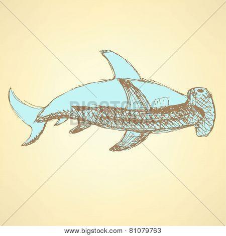 Sketch Hammerhead Shark In Vintage Style