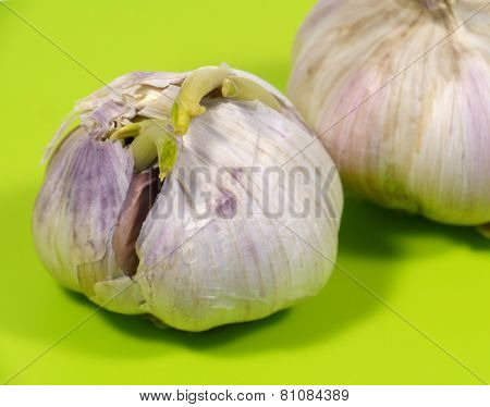 Garlic bulbs on a green cutting board