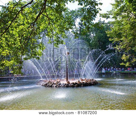 Petrodvorets. Fountain Sun.