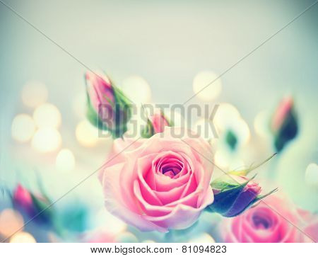 Beautiful Pink Roses. Vintage Styled card design. Retro style toned. Valentine's day. Soft focus
