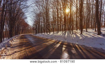 Beautiful Winter Landscape On The Road