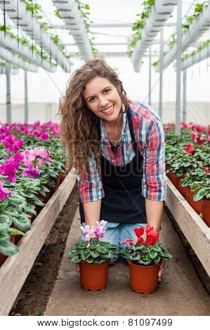 Florist woman working with flowers in a greenhouse.