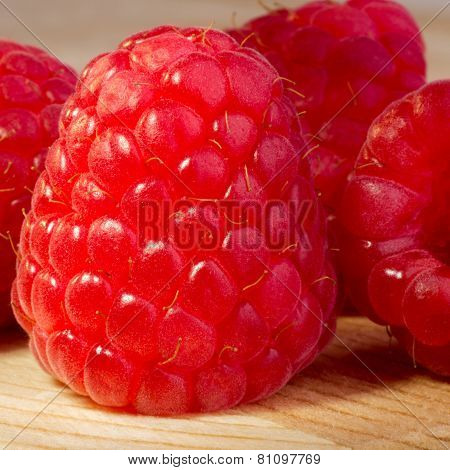 Raspberry Up Close