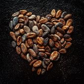 pic of cocoa beans  - Cocoa beans in the shape of hearts - JPG