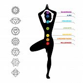 stock photo of kundalini  - Vector illustration of Color chakra scheme on white background - JPG