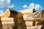 foto of scribes  - Construction of the handcrafted scribe fit log house - JPG