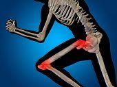 picture of knee-cap  - Conceptual 3D human man anatomy or health design - JPG