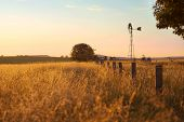 picture of windmills  - Windmill in the outback of Brisbane - JPG