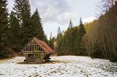 picture of manger  - manger with hay for the reindeer in the winter forest  - JPG
