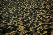 picture of suny  - Sandy beach with foot tracks and hard shadows at suny summer afternoon - JPG
