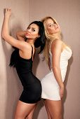 picture of skinny girl  - Two sexy beautiful women posing in lingerie looking at camera - JPG