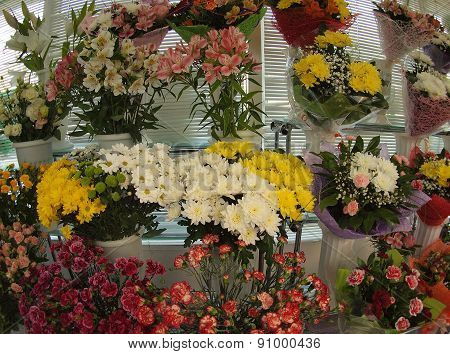 Showcase In The Flower Shop