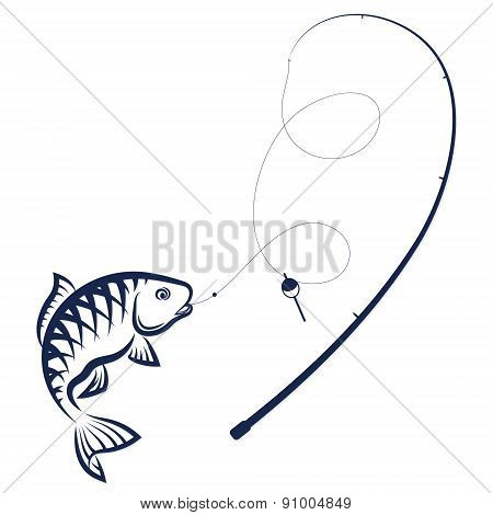 Fish on the hook and rod