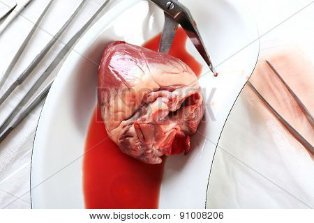 Heart organ in medical metal tray with tools on table close up