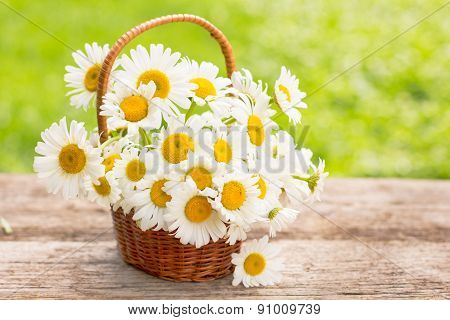 Daisy flowers in the small basket