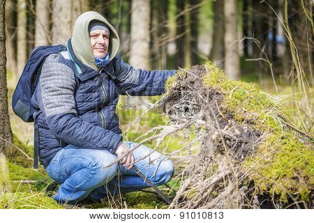 Hiker at the fallen tree roots in forest