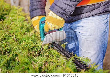 Landscape worker with bush cutter