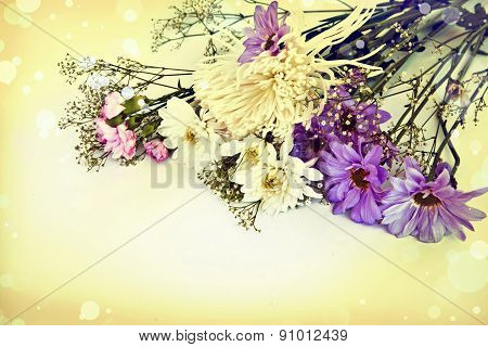 floral background with chamomile, chrysanthemum,