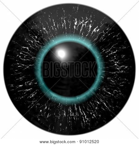 Black Alien, Bird Or Reptile Eye With Blue Circle Around The Pupil