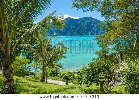Exotic bay with boats and palm trees, Thailand