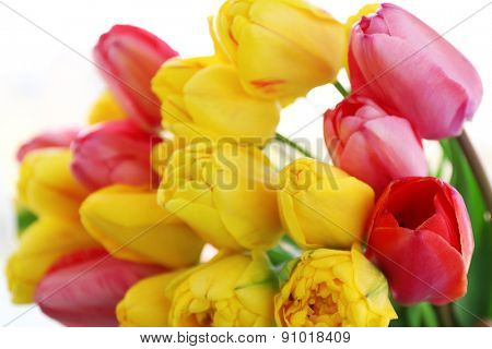 Beautiful bouquet of tulips close up