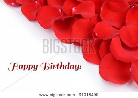 Beautiful petals of red roses on white background