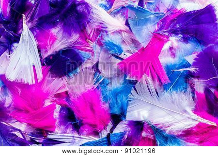 Cut Color Feathers