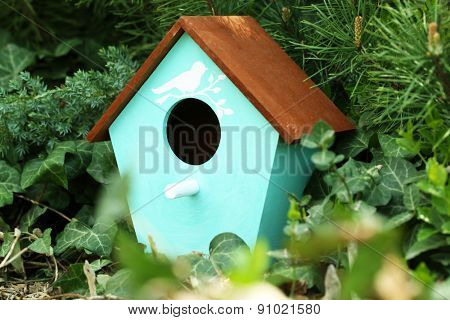 Decorative nesting box on green background