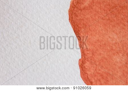 Burnt Orange Watercolor 9