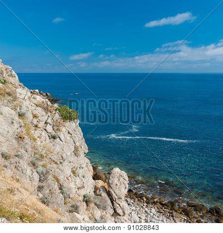 Wild Black sea shore at spring season
