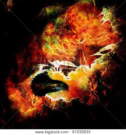 Fenix In Fire  On An Abstract Background, Color With Spot Structures. .