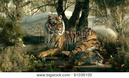 Siberian Tiger Family, 3D Cg